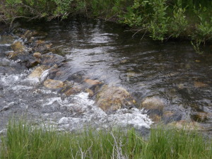 Stream Canmore2014-06-24 00.45.41